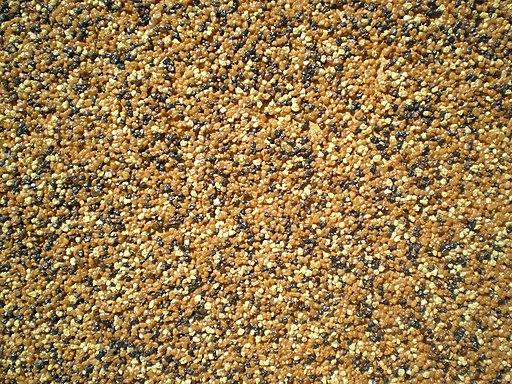 Tynk mozaikowy, kamyczkowy – poznaj jego właściwości i wymagania.