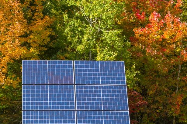 Fakty i mity na temat fotowoltaiki oraz budowa paneli słonecznych.